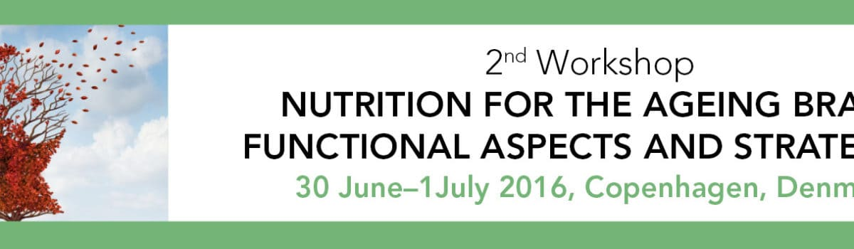 2nd Workshop on Nutrition for the Ageing Brain